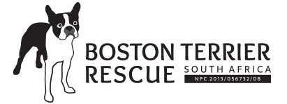 Boston Terrier Rescue SA Logo